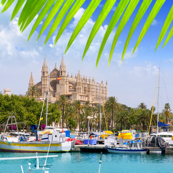 Majorca Cathedral from Marina port